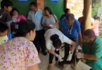 Porto Alegre, RS - 25/04/2018 Unidade Móvel dos Direitos Animais atendeu comunidades indígenas nesta quarta-feira Foto: Ari Teixeira / Divulgação PMPA